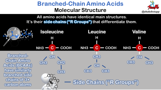 Branched-Chain-Amino-Acids-Molecular-Structure