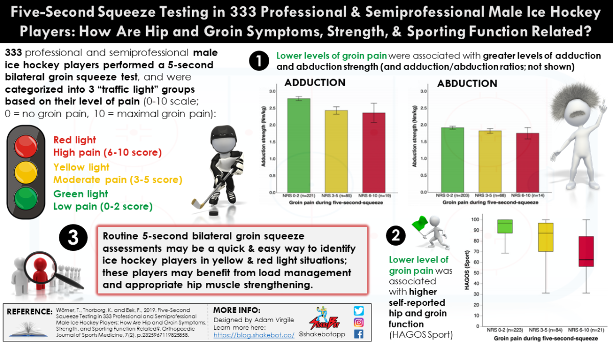Five-Second Squeeze Testing in 333 Professional and Semiprofessional Male Ice Hockey Players: How Are Hip and Groin Symptoms, Strength, and Sporting Function Related?